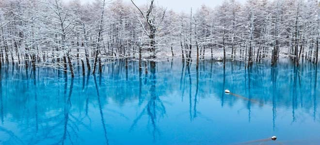 The blue Pond, Japan