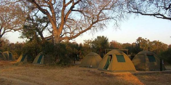 Accommodations to stay in during the Safari