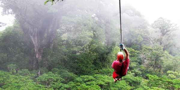 Glide through a canopy of rainforest clouds on a zipline