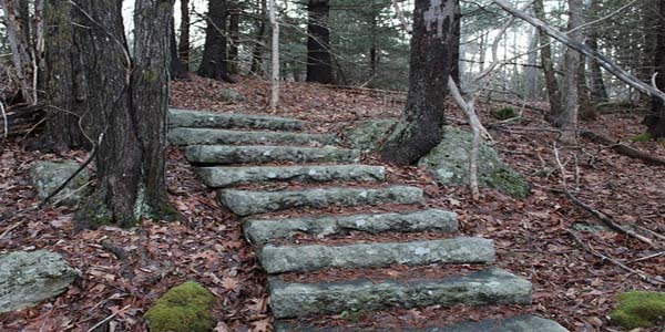 The mysterious stairs in the woods that lead nowhere