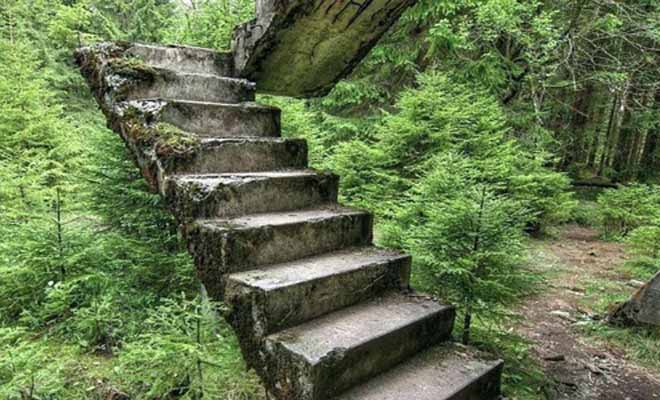 Mystical wooden stairs