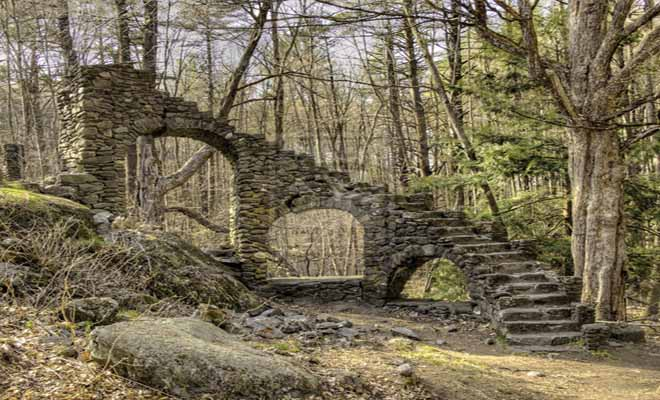 Stone stairs in the woods